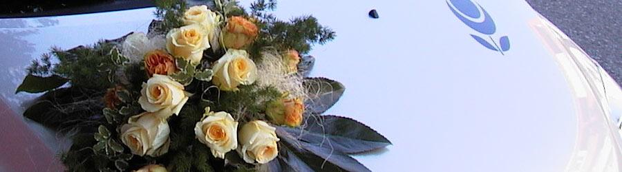 Datenschutz mobiler Blumenservice München - Blume & Beiwerk